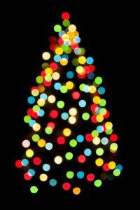 Christmas Tree Lighting and Carol Sing @ Community Hall   Ottawa   Ontario   Canada